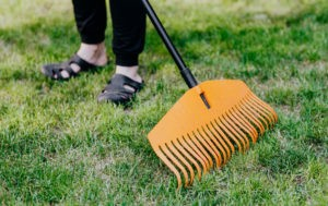 3 Areas Not to Overlook During a Spring-Cleaning Session